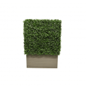 Artificial Boxwood Hedge 50 x 75 x 25cm