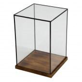 Rectangular Glass Display Case - Large (GBW03)