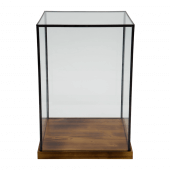 Glass Box Display Case in tall / large size