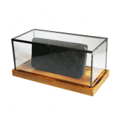 Rectangular Glass Display Case in small, medium and large