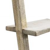 Leaning wooden ladder shelves